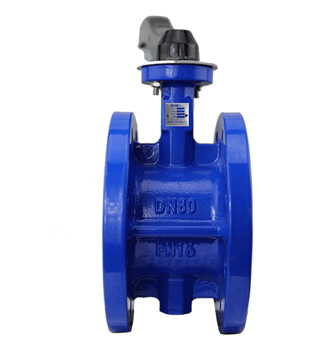 Manual Flanged Butterfly Valve3