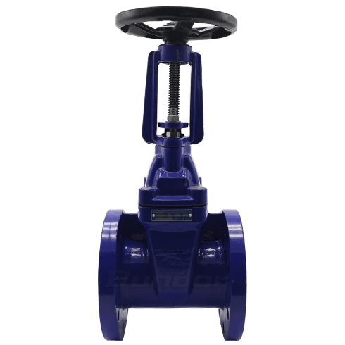 BS5163 Resilient Gate Valve1