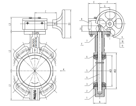 Ductile Iron Worm Gear Butterfly Valve