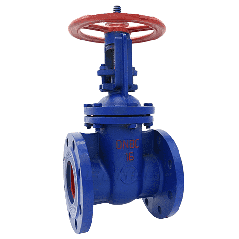 Rising Stem Gate Valve1