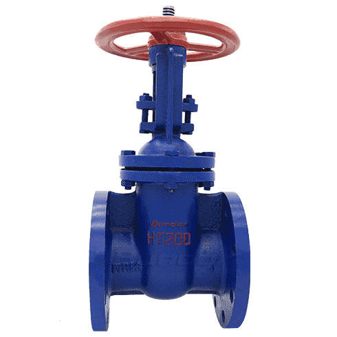 Rising Stem Gate Valve3