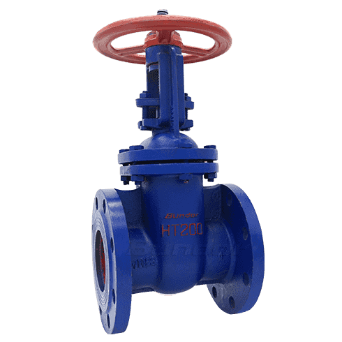 Rising Stem Gate Valve4