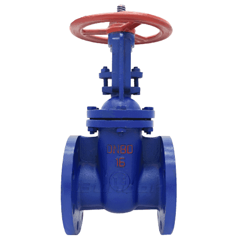 Rising Stem Gate Valve2