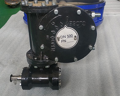 Bundor soft seat butterfly valves exported to South Africa.