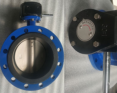 A foreign trade company in China purchased  flanged butterfly valves for export