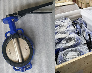 Bundor wide - sided seated butterfly valves
