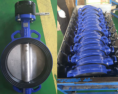 A Chinese company purchased Bundor ductile iron butterfly valves, gate valves and other valves