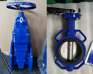 The butterfly valve and other products of Bundor exported to Southeast Asia