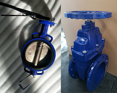 A company in Africa purchases gate valves and butterfly valves of Bundor